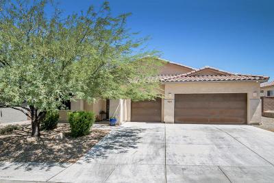 Marana Single Family Home For Sale: 12663 N Fallen Shadows Drive