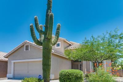 Tucson Single Family Home Active Contingent: 7251 W Odyssey Way