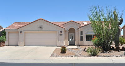 Green Valley AZ Single Family Home For Sale: $289,900