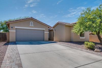 Sahuarita Single Family Home Active Contingent: 15253 S Avenida Rancho Sereno