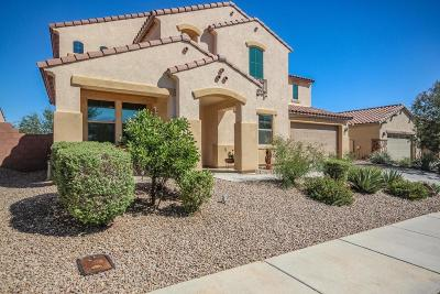 Marana Single Family Home For Sale: 12496 N Wind Runner Parkway