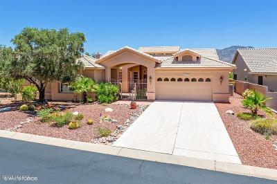 Tucson Single Family Home For Sale: 37087 S Canyon View Drive