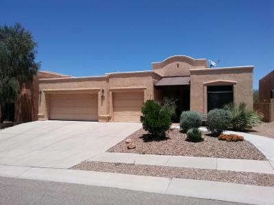 Single Family Home Active Contingent: 1166 N Golden Palomino Place