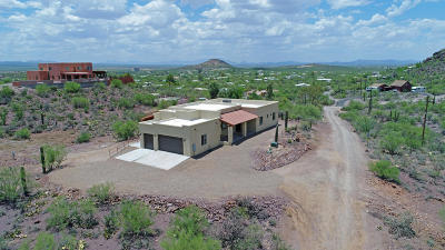 Pima County Single Family Home For Sale: 4445 W Milton Road