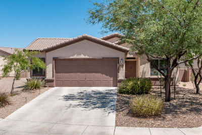 Marana Single Family Home Active Contingent: 11139 W Prairie Willow Drive