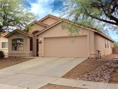 Tucson Single Family Home For Sale: 3597 W Lenihan Lane