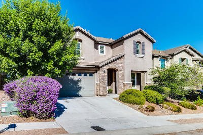 Single Family Home For Sale: 17276 S Painted Vistas Way