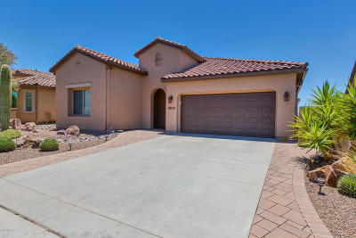 Saddlebrooke, Saddlebrooke Ranch Single Family Home Active Contingent: 60749 E Arroyo Vista Drive