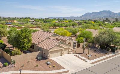 Tucson Single Family Home For Sale: 3943 E Ruffian Road