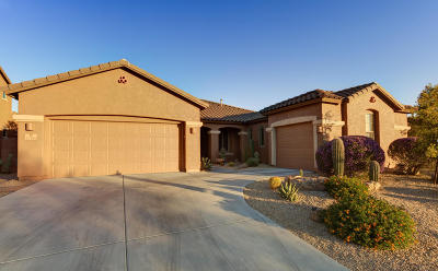 Marana Single Family Home For Sale: 12464 N Paseo Penuela