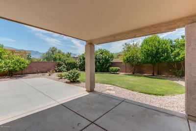 Tucson Single Family Home For Sale: 3566 E Canter Road