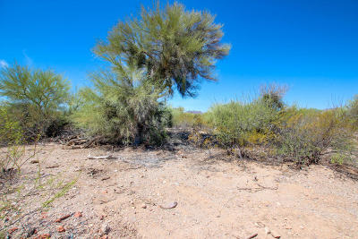 Tucson Residential Lots & Land For Sale: 3475 W Sweetwell Place W