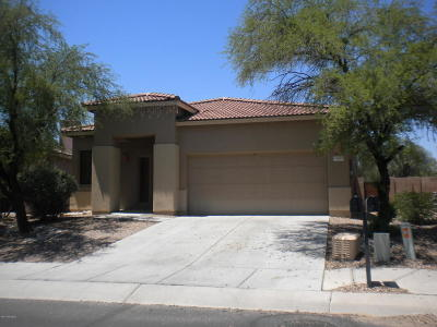 Tucson Single Family Home For Sale: 5541 N Little River Lane