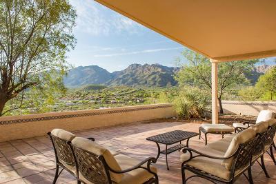 Tucson Single Family Home For Sale: 4433 N Summer Set Loop