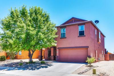Tucson Single Family Home For Sale: 2214 E Calle Sierra Del Manantial