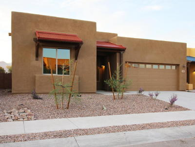Tucson Single Family Home For Sale: 8965 E Wright School Loop