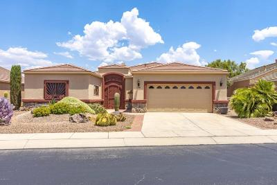 Green Valley Single Family Home Active Contingent: 3477 S Waterfall Drive