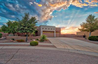 Vail Single Family Home For Sale: 17186 S Cinnebar Mesa Court