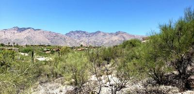 Residential Lots & Land For Sale: 5579 N Cimarron Vista Court #