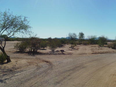Residential Lots & Land For Sale: No Site Address