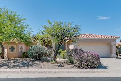 Tucson Single Family Home For Sale: 98 E Golden Sun Place