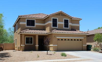 Sahuarita Single Family Home For Sale: 477 W Corte Planga