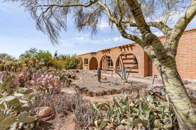 Tucson Single Family Home For Sale: 3951 W Oasis Drive