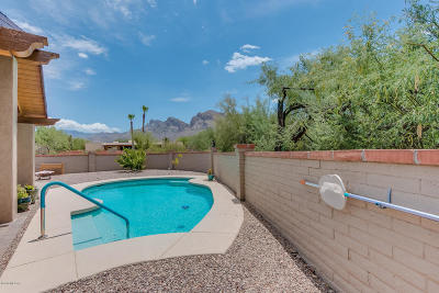 Oro Valley Single Family Home For Sale: 655 W Bangalor Drive