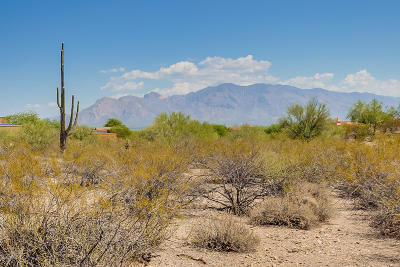 Tucson Residential Lots & Land For Sale: No Situs Address
