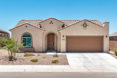 Marana Single Family Home For Sale: 7069 W River Trail