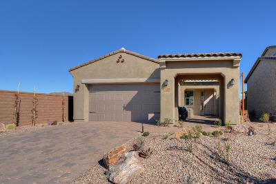 Tucson Single Family Home For Sale: 13409 N Silver Cassia Place