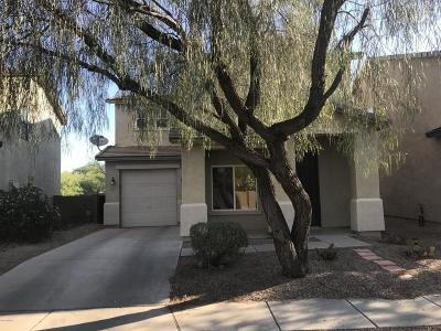 Tucson Single Family Home For Sale: 4259 E Boulder Springs Way