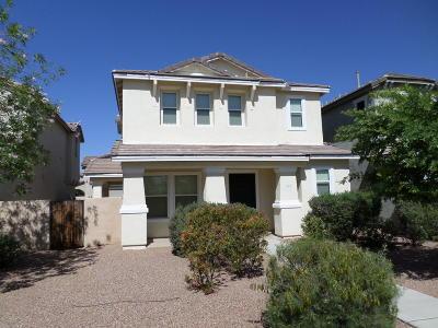 Sahuarita Single Family Home For Sale: 673 W Paseo Celestial