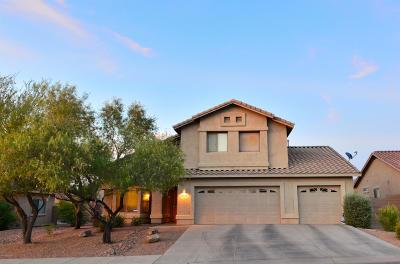 Tucson Single Family Home For Sale: 7680 W Innutian Court