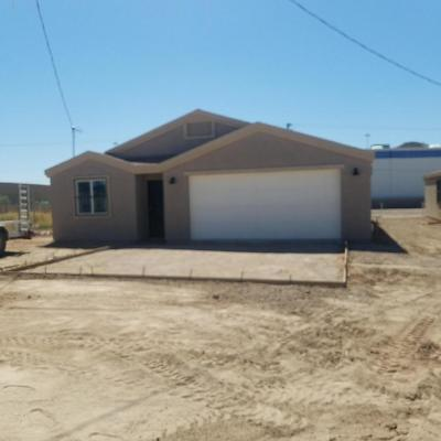 Tucson Single Family Home For Sale: 1321 S 11th Avenue