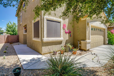 Sahuarita Single Family Home For Sale: 88 N Mail Station Lane