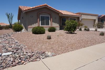 Oro Valley Single Family Home For Sale: 14365 N Coyote Canyon Lane