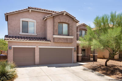 Sahuarita Single Family Home For Sale: 14291 S Via Trujal