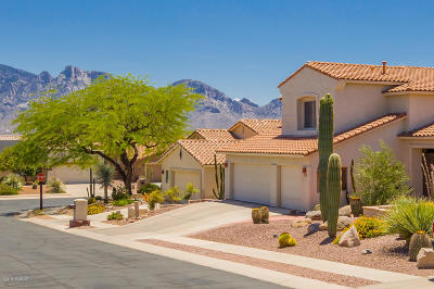 Oro Valley Single Family Home For Sale: 163 W Red Pepper Place