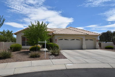 Oro Valley Single Family Home Active Contingent: 12494 N Echo Valley Drive