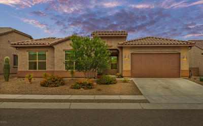 Marana Single Family Home For Sale: 4331 W Summit Ranch Place