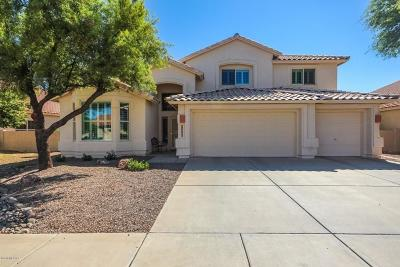 Oro Valley Single Family Home Active Contingent: 12386 N Echo Valley Drive