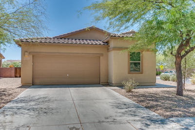 Marana Single Family Home Active Contingent: 12965 N Lea Maw Drive