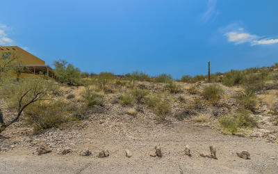Tucson Residential Lots & Land Active Contingent: 134 S Panorama Circle #
