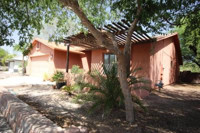 Tucson Single Family Home For Sale: 9819 N Camino Vado