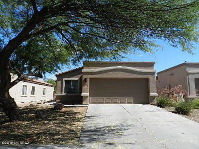Sahuarita Single Family Home For Sale: 102 E Corte Rancho Centro