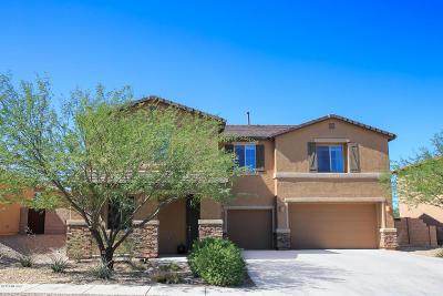 Single Family Home For Sale: 172 E Adytum Place