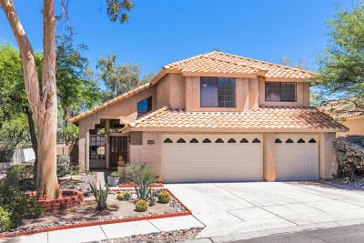 Single Family Home Active Contingent: 9433 E Star Water Drive