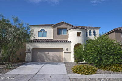 Vail Single Family Home For Sale: 12443 E Calle Riobamba