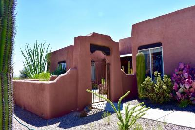 Tucson Single Family Home For Sale: 4176 S Tree Cricket Place